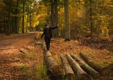 有秋天叶子的快乐的妇女在晴朗的森林里 库存照片