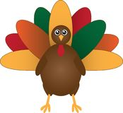 有秋天和秋天颜色的土耳其 免版税库存图片