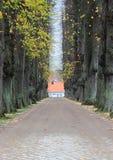 有秋天树和砖路的胡同 免版税库存照片