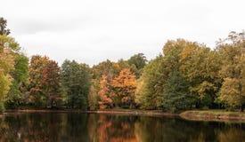 有秋天树的秋天池塘在岸 免版税库存照片