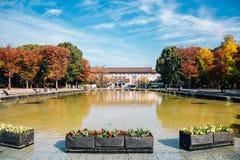 有秋天槭树的东京国立博物馆在上野公园在东京,日本 库存照片