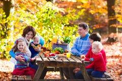 有秋天的系列野餐 库存照片