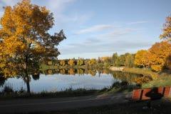 有秋天颜色的湖 免版税图库摄影