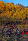 有秋天颜色的登山车 图库摄影