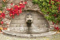 有秋季红色叶子的古老喷泉 库存照片