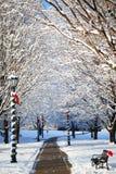 有积雪的树的冬天胡同和在长凳的圣诞老人帽子 免版税图库摄影