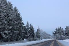 有积雪的树的冬天路 库存照片