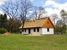 有秸杆屋顶的老木房子 库存照片