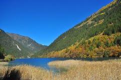 有秸杆的湖在与树的一个谷 免版税库存照片