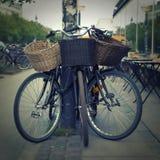 有秸杆篮子的自行车 免版税图库摄影