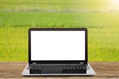有空白的白色屏幕的膝上型计算机在被弄脏的新绿色草甸背景的葡萄酒木桌上 库存图片