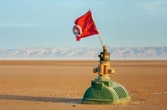 有突尼斯的旗子的滑稽的设施大盐湖的Chott El Jerid 免版税图库摄影