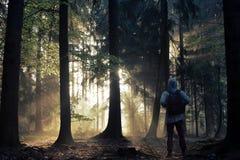 有站立在薄雾的一个森林里的背包的年轻人在日出 库存图片