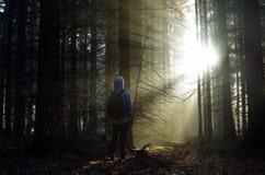 有站立在薄雾的一个森林里的背包的年轻人在日出 库存照片