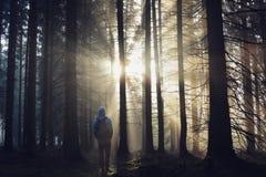 有站立在薄雾的一个森林里的背包的年轻人在日出 免版税库存照片