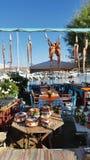 有章鱼干燥的希腊餐馆在太阳 免版税库存照片