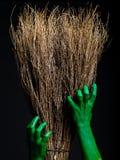 有笤帚的绿色蛇神手 播种被扩大的火光灵活性光晕月光奥秘影子蜘蛛网的大明亮的铸件古怪 免版税库存图片