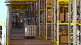 有箱子乘驾的一辆铲车在行之间在仓库,一个人驾驶一辆铲车在仓库里 工作在仓库里 股票录像