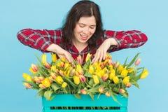 有箱子的快乐的少妇卖花人在蓝色背景的郁金香 免版税库存图片