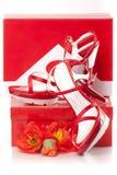 有箱子的红色鞋子 免版税库存照片