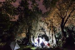 有篝火的森林在与星的晚上在天空 免版税库存图片