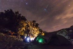 有篝火的森林在与星的晚上在天空 免版税图库摄影