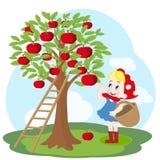 有篮子和苹果树的女孩 库存照片