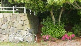 有篮子桃红色的减速火箭的白色自行车开花,在同水准的绿色树 库存图片