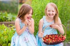 有篮子的两个妹有很多在t的有机草莓 免版税图库摄影