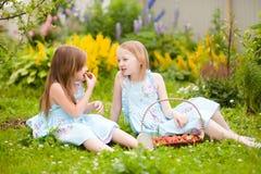 有篮子的两个妹有很多在t的有机草莓 图库摄影