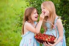 有篮子的两个妹有很多在t的有机草莓 库存照片