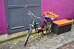 有篮子的停放的自行车 免版税库存照片