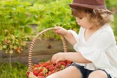 有篮子的逗人喜爱的小女孩有很多stawberry 库存照片