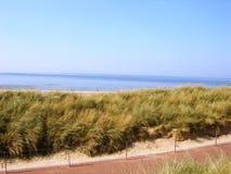 有篱芭的导致海滩的道路和海草 免版税图库摄影