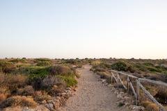 有篱芭的沙子道路在右边 免版税库存图片