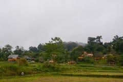 有米大阳台的村庄在Mae巴生Luang,清迈,泰国调遣 免版税库存照片