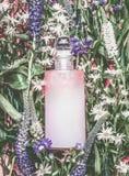 有粉红彩笔精华、补品、洗涤的油,乳化液或者剥皮的自然化妆用品瓶在草本叶子和野花 库存照片