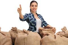 有粗麻布大袋的农夫用咖啡填装了和给赞许 库存照片