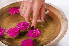 有紫色油漆的女孩手在接触在木碗的钉子花用水 免版税图库摄影