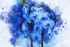 有紫色花和绿色叶子的热带蓝色的兰花植物 o r 向量例证