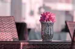 有紫色花花束的玻璃花瓶在书桌上的 库存图片