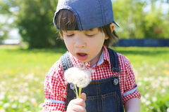 有絮球的愉快的小男孩在夏天 库存照片