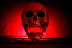 有红灯的人的头骨在深黑色背景,万圣节装饰 免版税库存照片