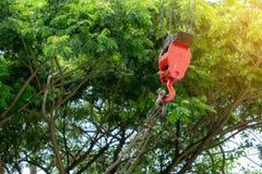 有红色举的钢起重机勾子的流动建筑用起重机,回转接头和连接钢吊索 被弄脏的美丽的树  免版税库存照片