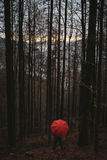 有红色伞的人在森林 免版税库存图片