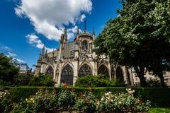 有红色和白玫瑰的巴黎圣母院大教堂 图库摄影