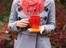 有红色咖啡的少妇在美丽的秋天公园 库存图片