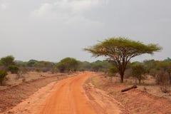 有红色土壤的,风景路在Afrika 免版税库存图片