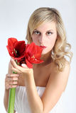 有红色孤挺花花的美丽的白肤金发的女孩在白色 图库摄影
