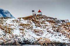 有红色屋顶的灯塔在积雪覆盖的山顶部 库存照片